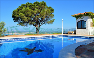 Pool-Torrevieja-0